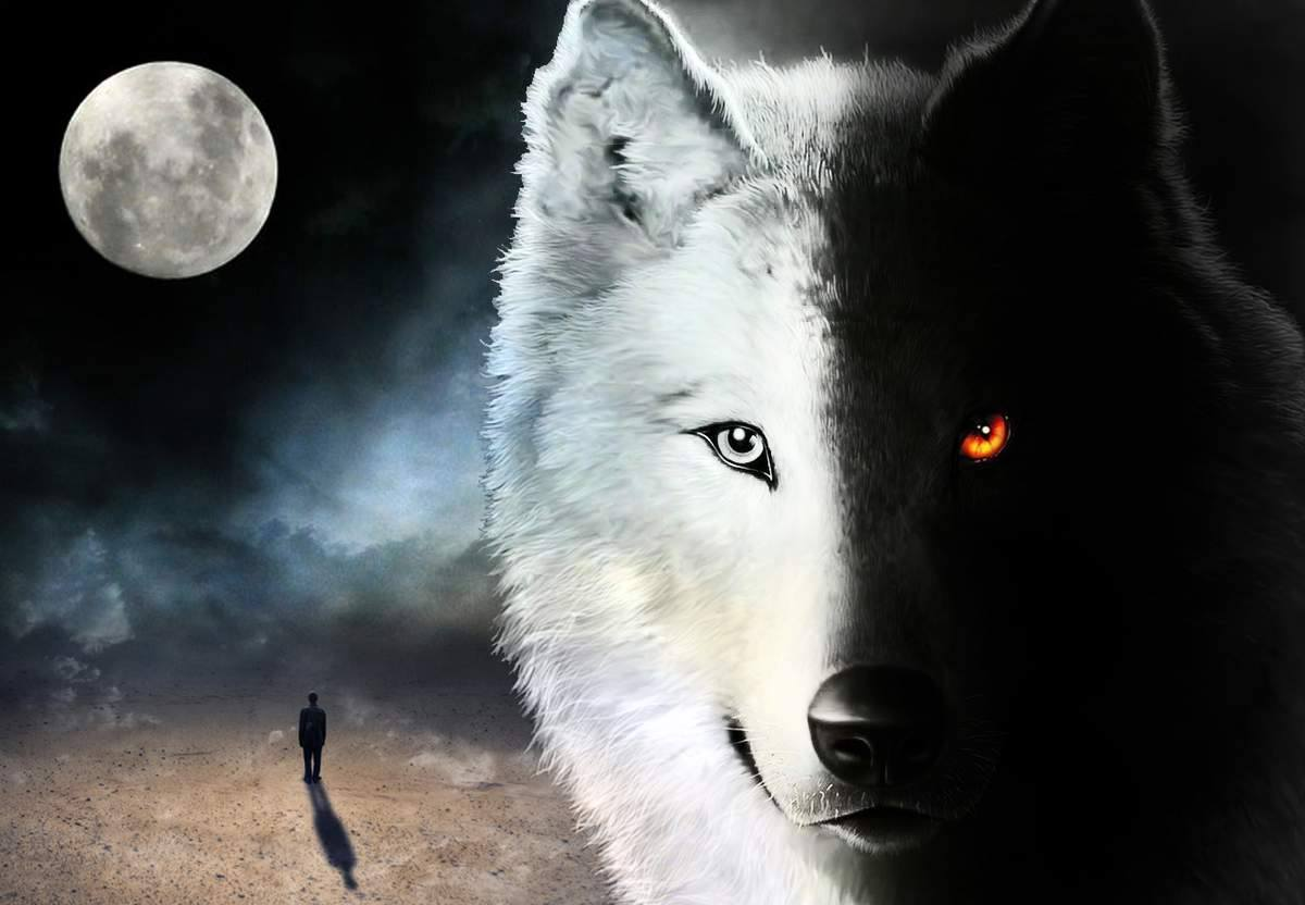 With Depression, the Wolf You Feed Is the Wolf That Wins With Depression, the Wolf You Feed Is the Wolf That Wins new picture